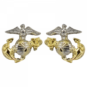 3D Two Tone Plated EGA Post Earrings-0